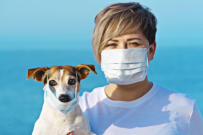 coronavirus-evcil-hayvanlar
