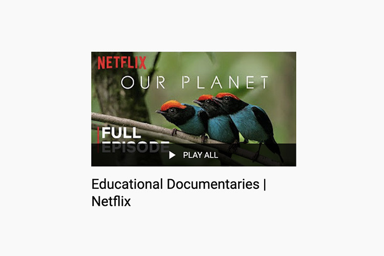 netflix-ucretsiz-belgeseller