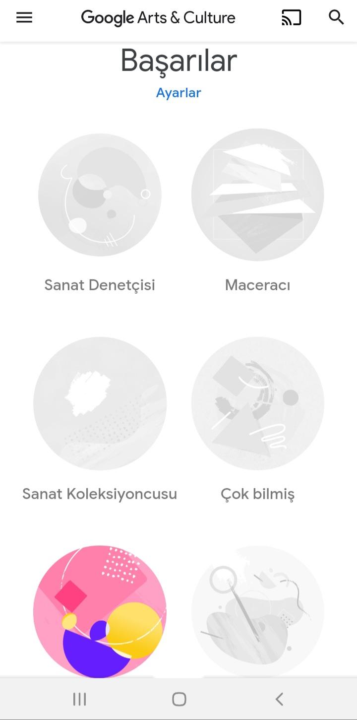 Google Arts and Culture Ayarları