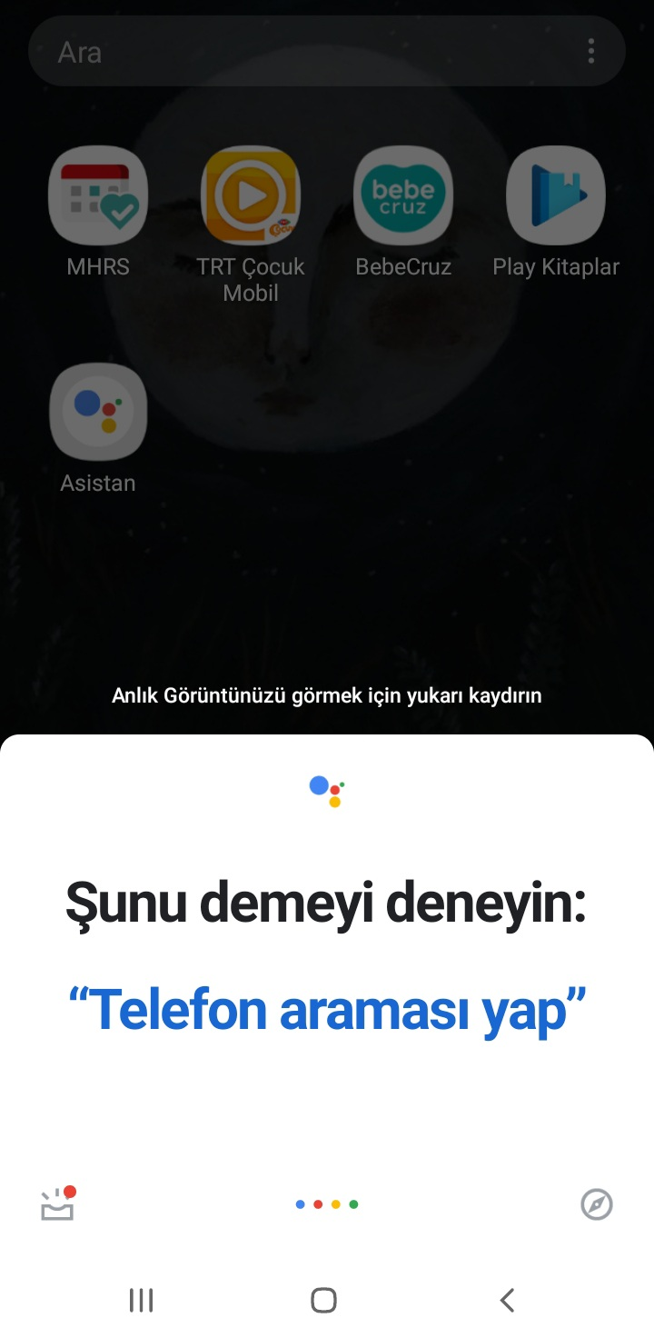 Google Asistan Ayarlar