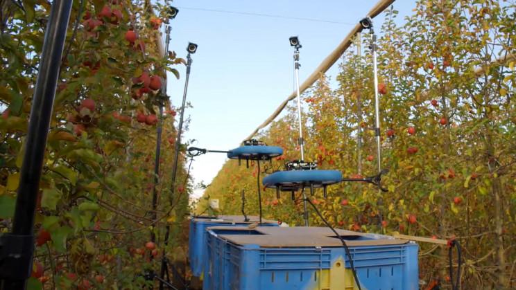Meyve Toplayıcı Robot