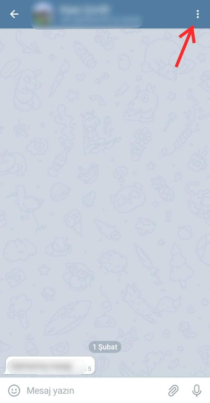 Telegram Otomatik Mesaj Silme