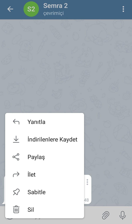 WhatsApp Sohbet Geçmişi Telegram'a Nasıl Taşınır?