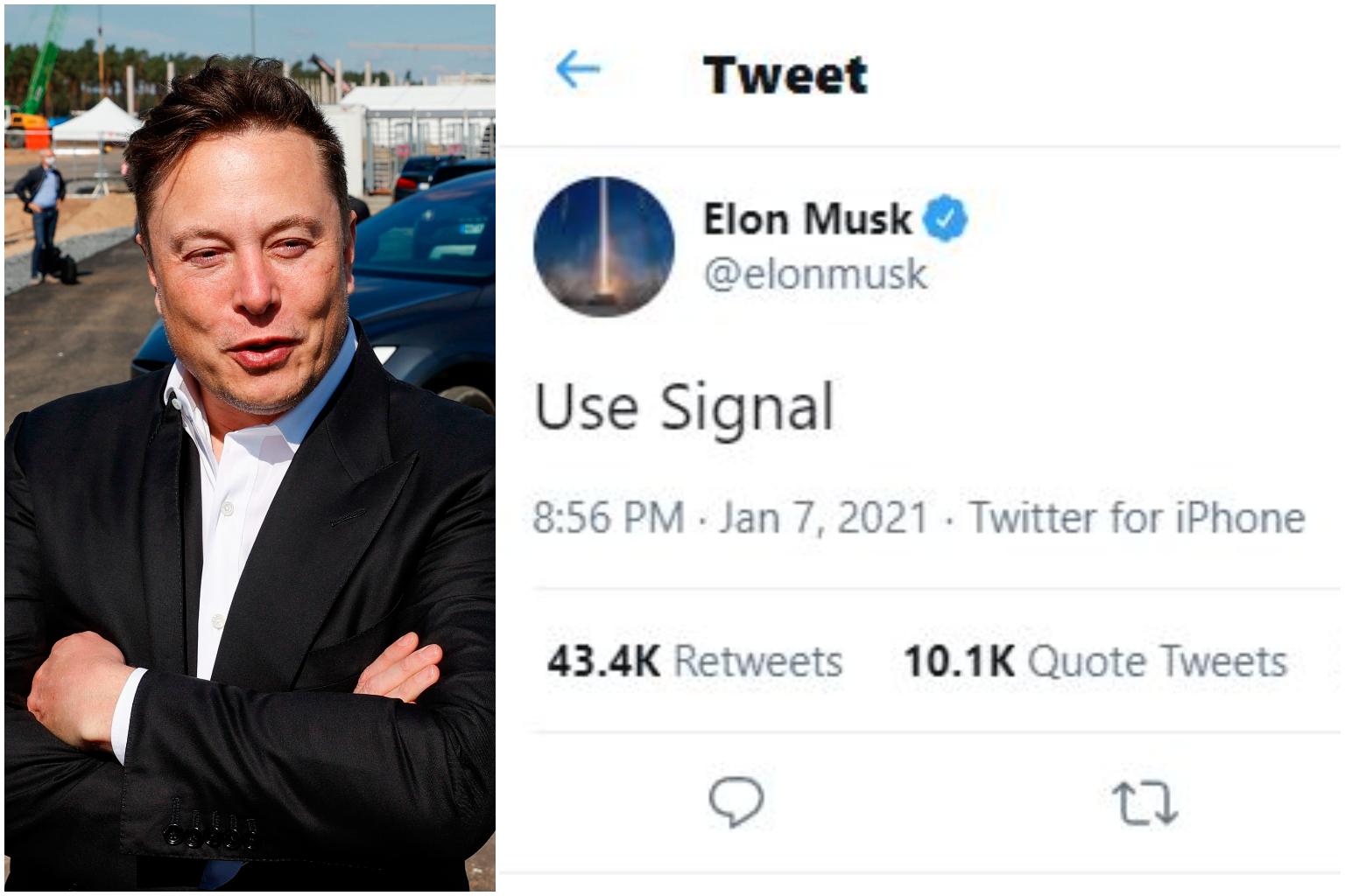 Elon Musk Signal