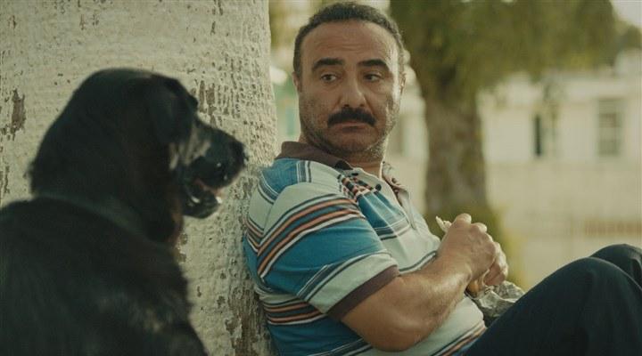 BluTV'de İzlemeniz Gereken En İyi Komedi Filmleri