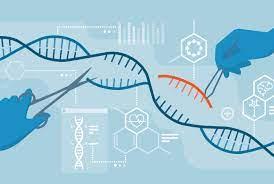 Uzayda DNA Onarımı